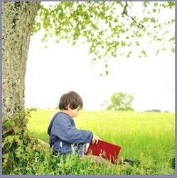 Spring-reading