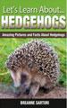 Learn-hedge